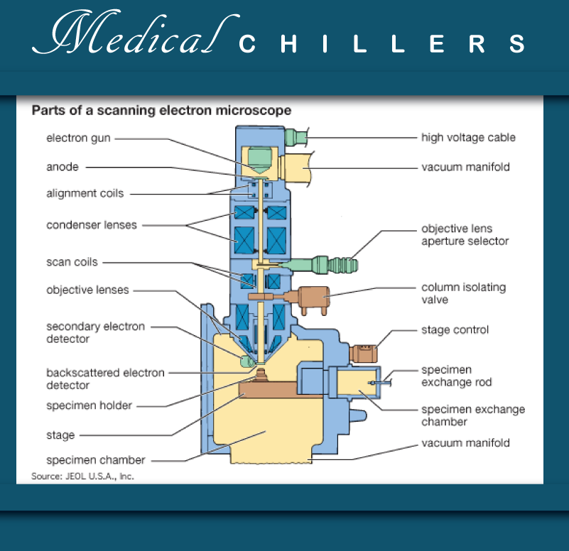 Medical-sem-diagram-16